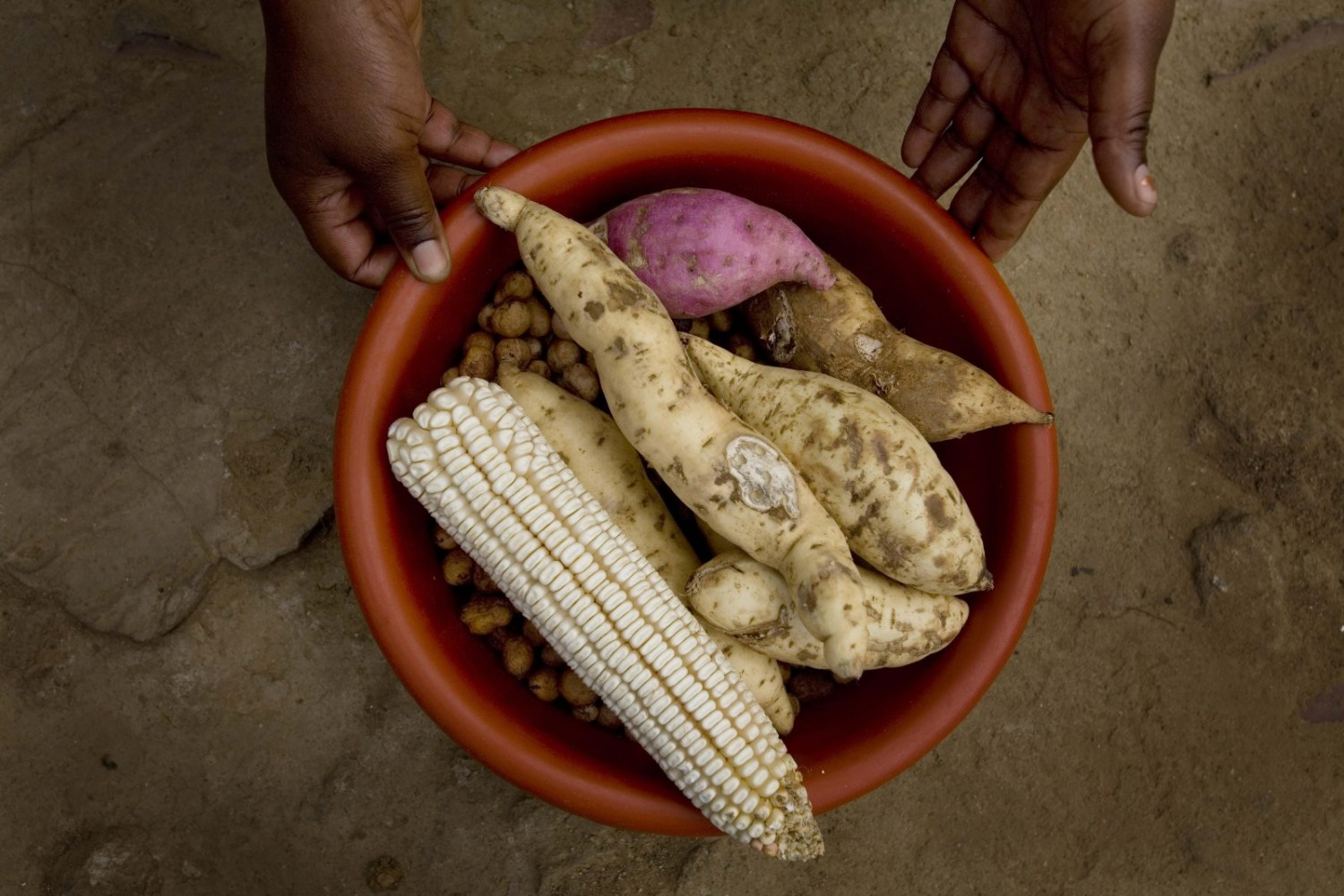 Baskets of food, like this one distributed to internally displaced communities in Zimbabwe in 2009,  are just one form of assistance aid agencies provide. Many instead prefer to give cash transfers, but Zimbabwe's cash shortage could hinder such programs over the next six months. Photo courtesy Kate Holt / IRIN via Flickr Creative Commons. https://www.flickr.com/photos/irinphotos/4194646508/