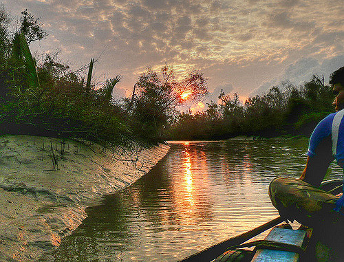 Critics assert that the Sundarbans, the world's largest mangrove forest, is threatened by water and air pollution from the proposed Rampal coal-fired power plant, upstream on the Passur River.