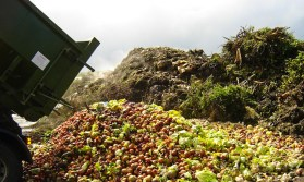 France Passes Law Banning Food Waste