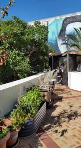 Rooftop Garden City of Fremantle
