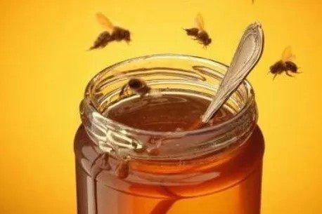 Apicoltura Giuseppe Paracchini – (miele acacia, castagno, millefiori e melata)