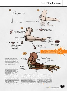 GFX-ImagineFX.Presents.Anatomy.How.to.draw.and.paint.Anatomy.2010_Page_049