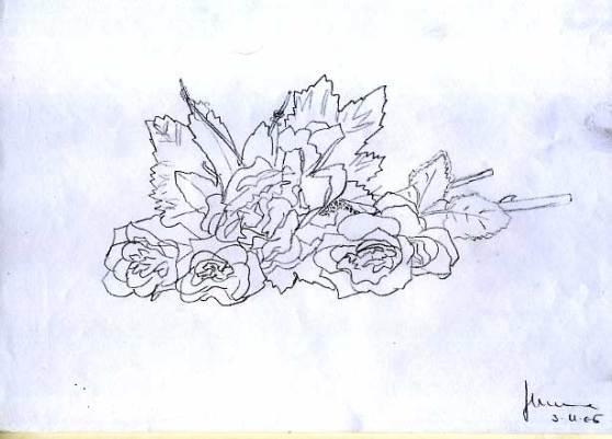 disegno-di-puro-contorno2