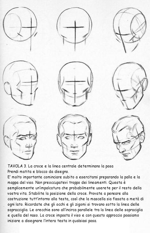 """4 /""""Anatomia del modello umano Testa del cranio Muscolo artista Disegno"""