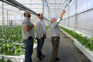 270 Posti di Lavoro nell'Agroalimentare con Valagro e Invitalia
