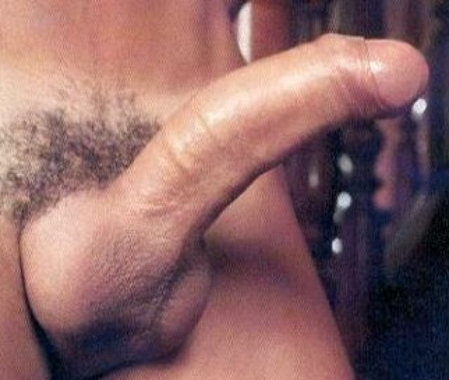 Intact Penis Erect Foreskin Partly Retracted 2