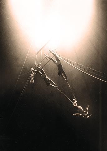 Rose Gold à Medrano - impératrice du trapèze