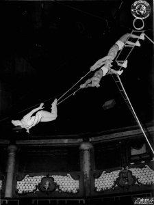 Rose Gold, impératrice du trapèze, et ses partenaires- photo M. Esnault