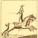 Price à rebours - Voltigeurs à cheval