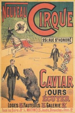 Affiche de l'ours Caviar - Nouveau Cirque de Paris