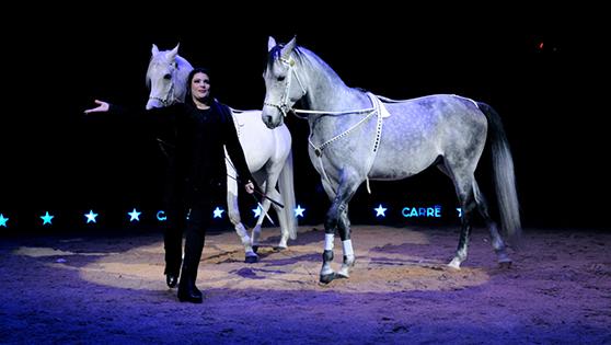 Géraldine Knie et ses élèves - Cheval au Cirque