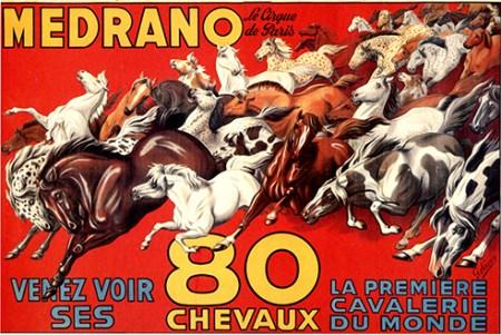 Chevaux à Medrano - cheval au Cirque