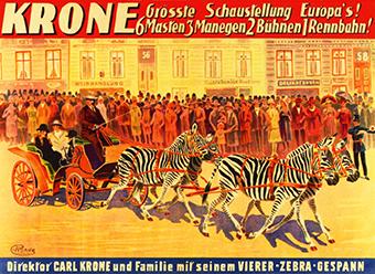 Zebras - Circus Dictionary