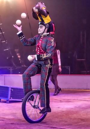 Macaque Aidyn Israfilov - Circus Dictionary