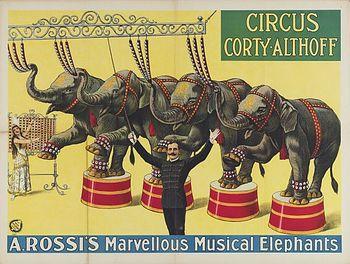 Eléphants musiciens de Rossi - Eléphants