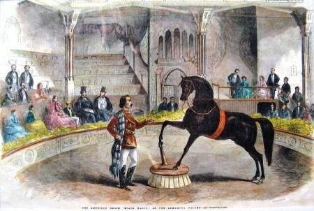 À l'Alhambra de Londres - Archives Arlequin
