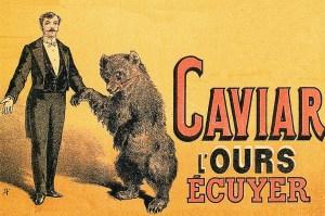 L'ours Caviar - Antoine Plège