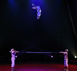Coup de projecteur sur acrobates à la barre russe