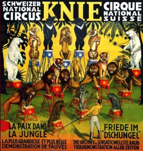 La paix dans la jungle au Cirque Knie