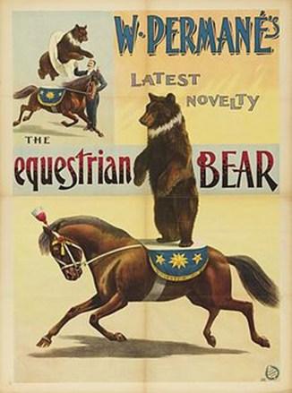L'ours de Permané - affiche