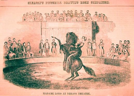 C. Loyo - Niblo - 1851.