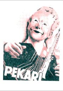 dessin de Pékari