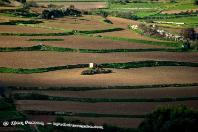 Maltese country side