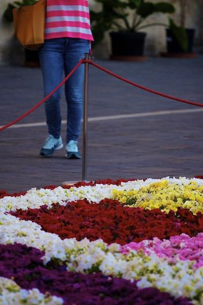 Colours, Valletta Green Festival, 2014,Alan Falzon,Circus Malta