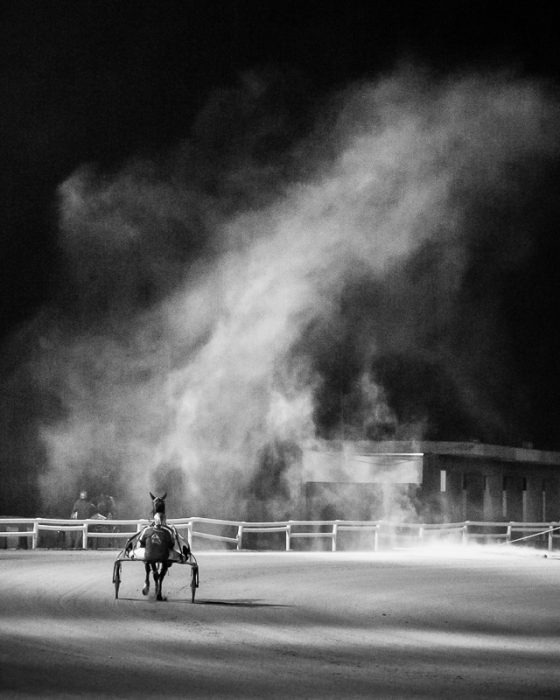 Horses preparing for race at night