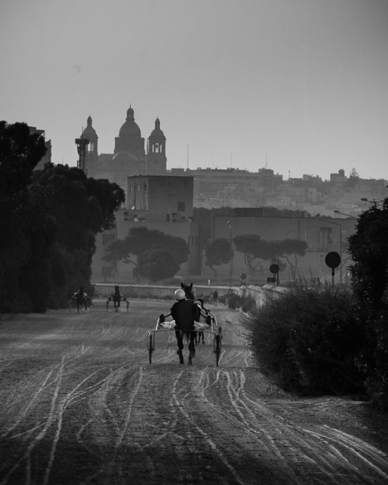 Horse, Riding, Sunday morning.