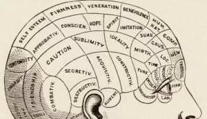 ShapeMagazine_Brain-621x356
