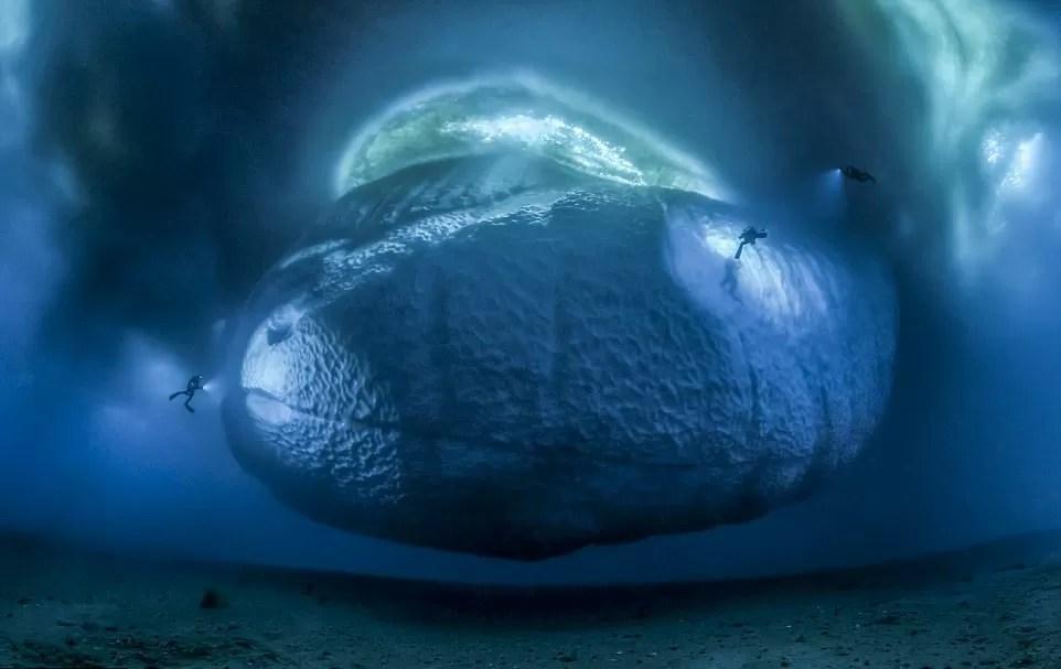Pianeta Terra - La face cachée de l'iceberg © Laurent Ballesta
