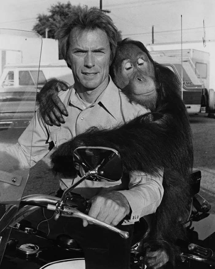 Clint Eastwood e Manis the Orang-utan