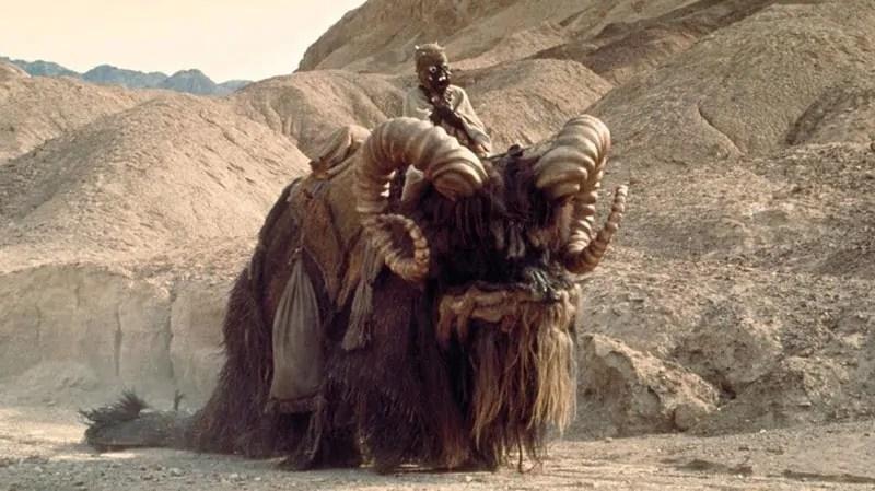 creature di star wars - bantha