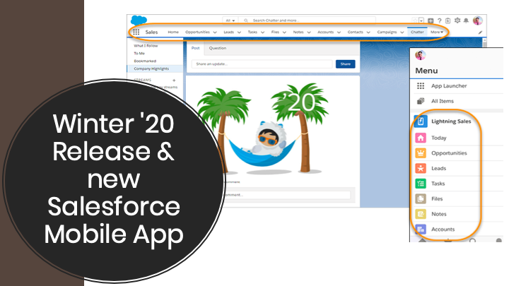 new Salesforce Mobile App in Winter 20 release