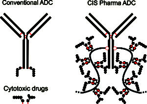 ADC Drug Carrier