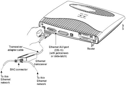 Structura şi funcţionarea calculatorului: Servicii