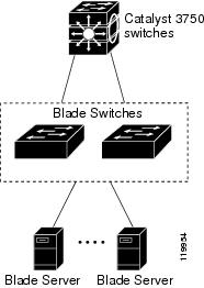 Cisco Catalyst Blade Switch 3020 for HP Software