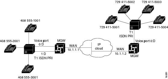 Installing and Configuring Voice-over-IP Feature Cards