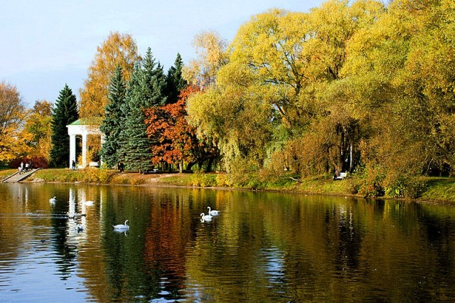 lebyazhiy-pond-at-primorskiy-victory-park-in-st-petersburg