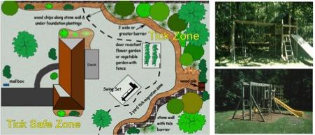 Aménager son jardin pour se protéger des piqûres de tiques