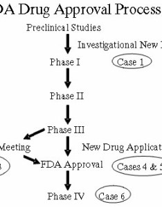 To obtain permission market  new drug the sponsor must submit application nda which includes all results of pre clinical and also access pharmaceutical data at fda public citizen rh