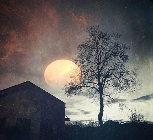 mystery moon ©Robin Cohen