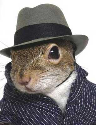 squirrel2.jpg