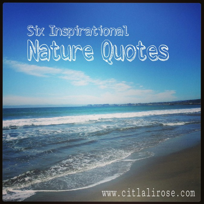 6 Inspirational Nature Quotes