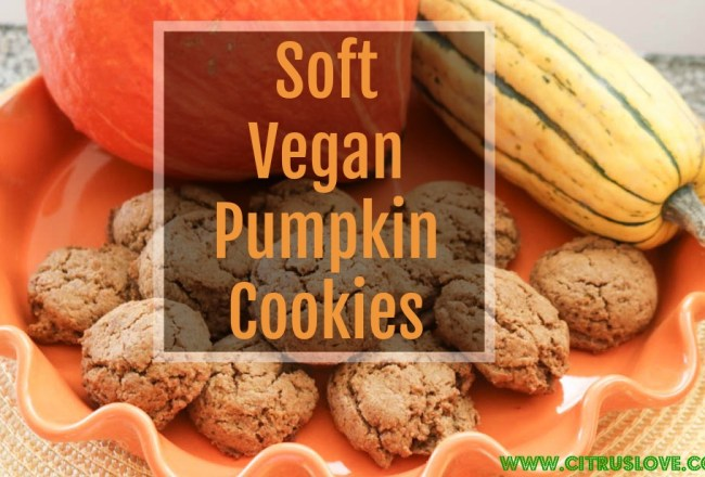 blog recipe, vegan, gluten free dessert, cookie, pumpkin, fall recipe