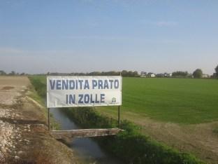 vendo_prato 007
