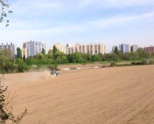 urban_field