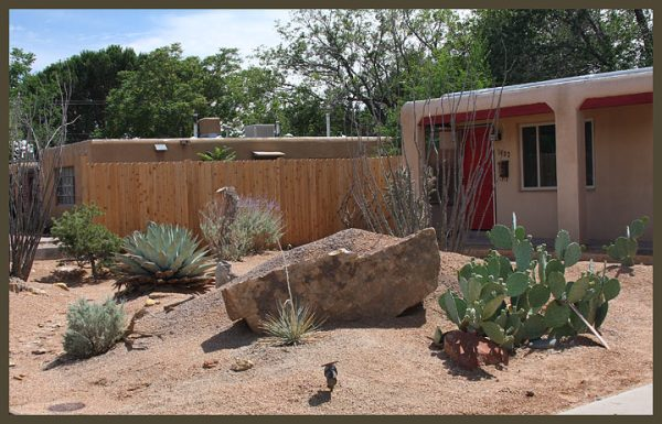 xeriscaping 2 home water