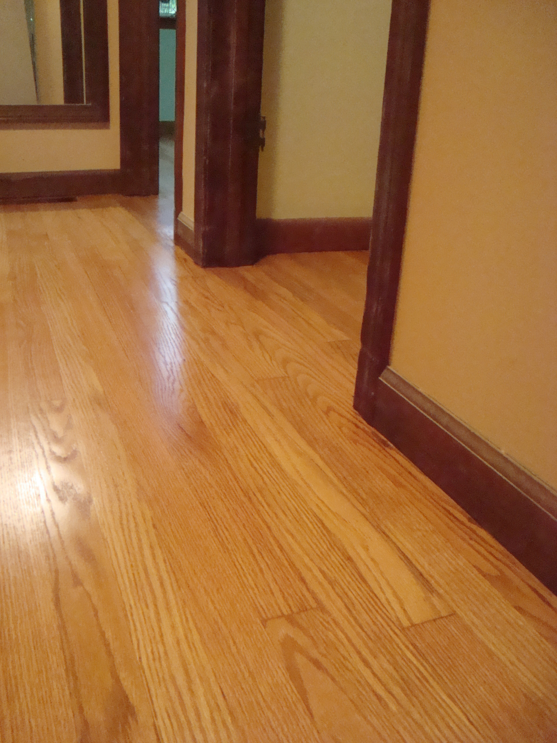 Refinishing Old Hardwood floors that are damaged stain